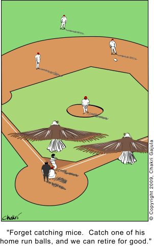 Home Run 171 Cartoons About Everything Humans Animals