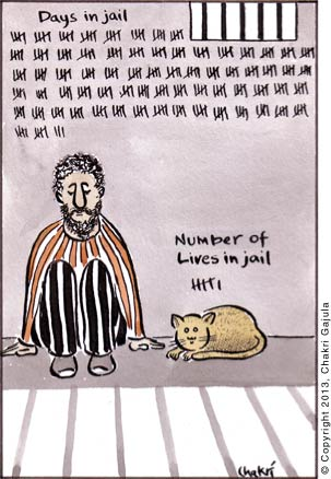Prisoner counting his days in jail, while his cat counting it's lives in jail