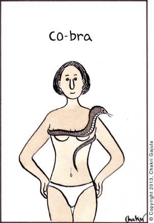 A lady in bikini wearing cobra snake as a bra, with a caption 'Co-bra'