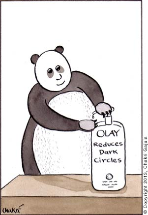 A panda using Olay's dark circle cream for it's eyes