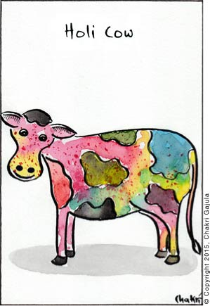 A cow is shown with full of colors with a caption 'Holi Cow'