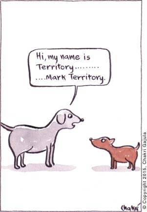 A bigger dog to a smaller dog 'Hi, my name is Territory .... .... ..... Mark Territory.